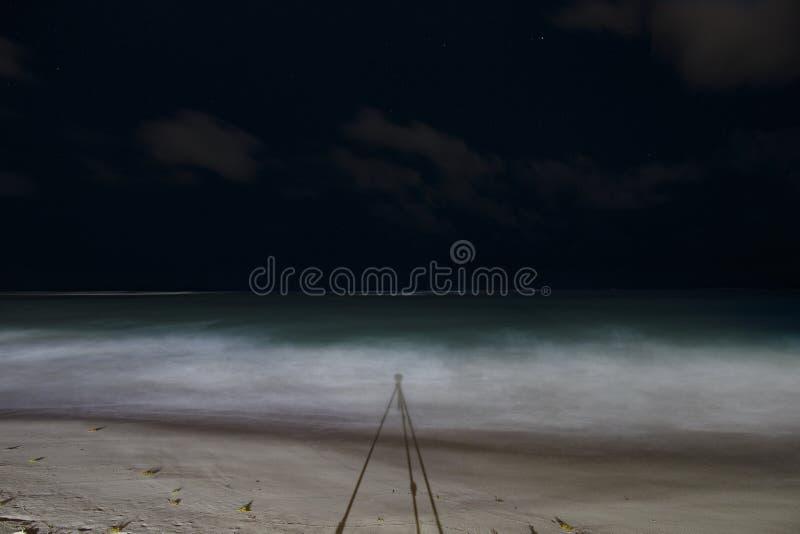Tropische Nacht, der sternenklare Himmel, der Atlantik lizenzfreies stockfoto