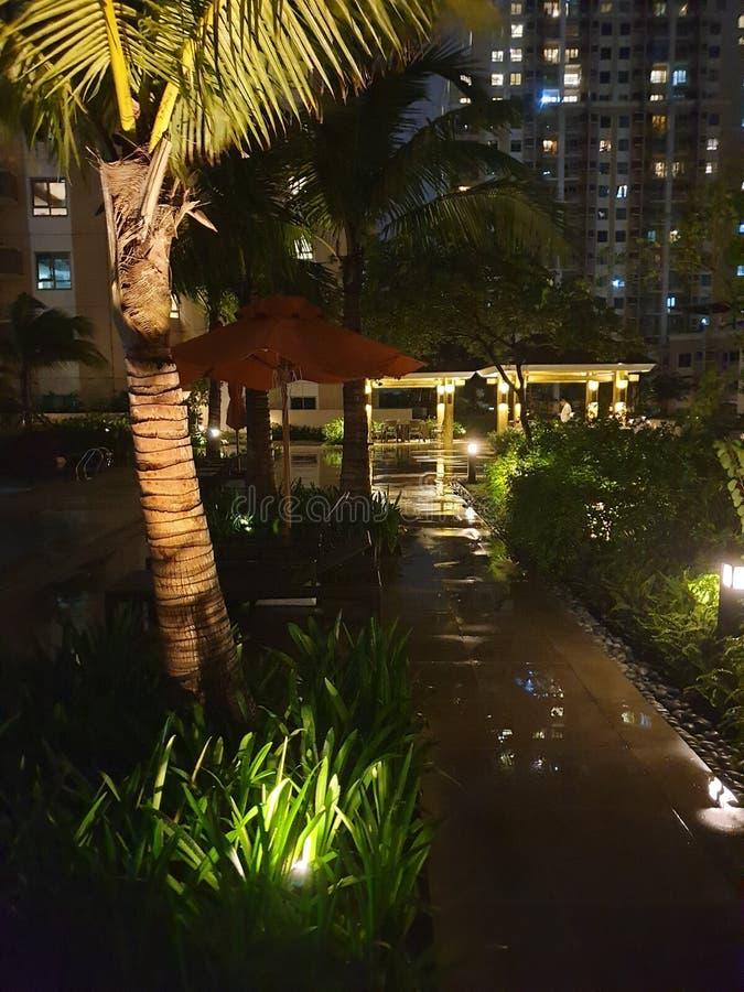 Tropische nachtgang aan pool stock afbeelding