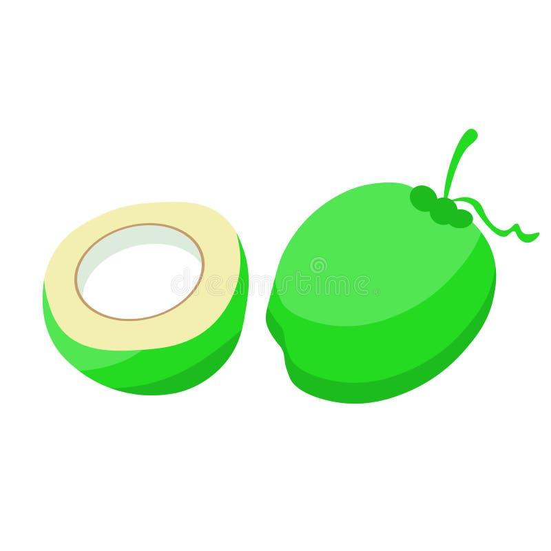 Tropische neue junge Kokosnussillustration Kokosnuss-Ikone stock abbildung