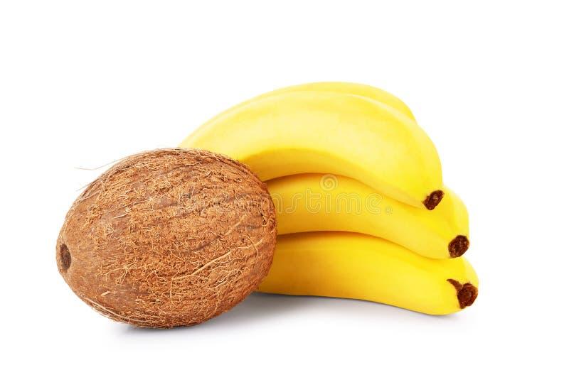 Tropische Obstbananen und Kokosnüsse auf einem weißen Hintergrund stockfoto