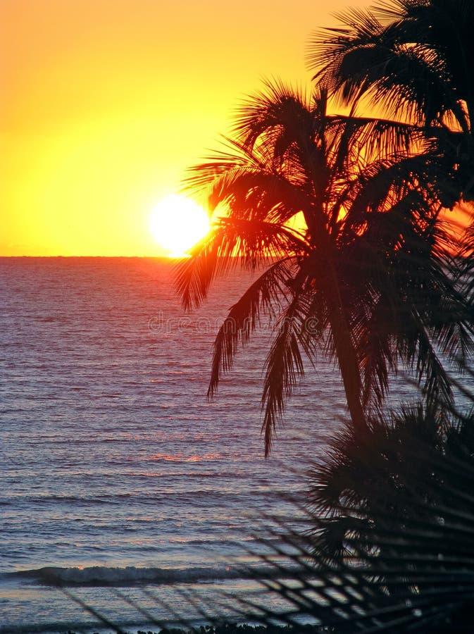 Tropische oceaanzonsondergang royalty-vrije stock afbeelding