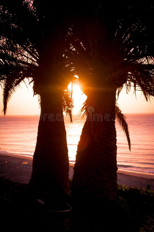Tropische oceaanzonsopgang bij fuerteventura royalty-vrije stock afbeelding