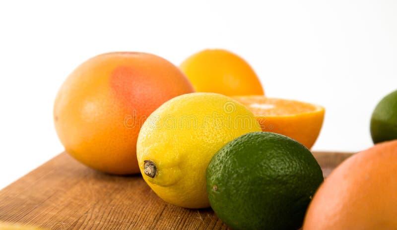 Tropische Orange stockfotos