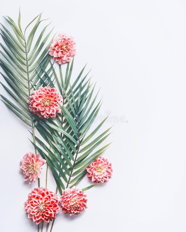 Tropische Palmblätter und exotische Blumen auf weißem Tischplattenhintergrund, Draufsicht, kreativer Plan mit Kopienraum stockbild