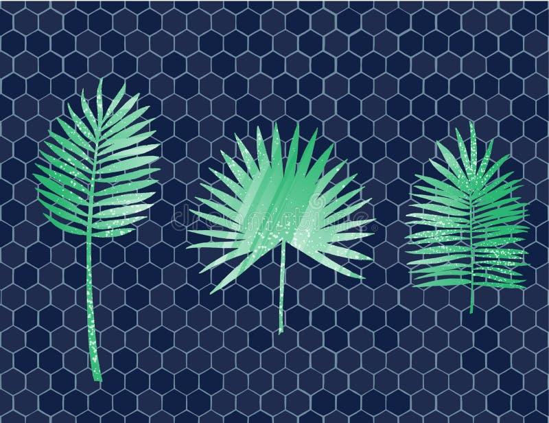 Tropische palmbladen geplaatst die op honingraatachtergrond worden geïsoleerd Vector illustratie stock illustratie