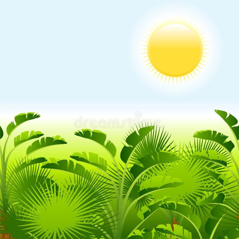 Tropische Palme mit Meer auf sonnigem Hintergrund stock abbildung