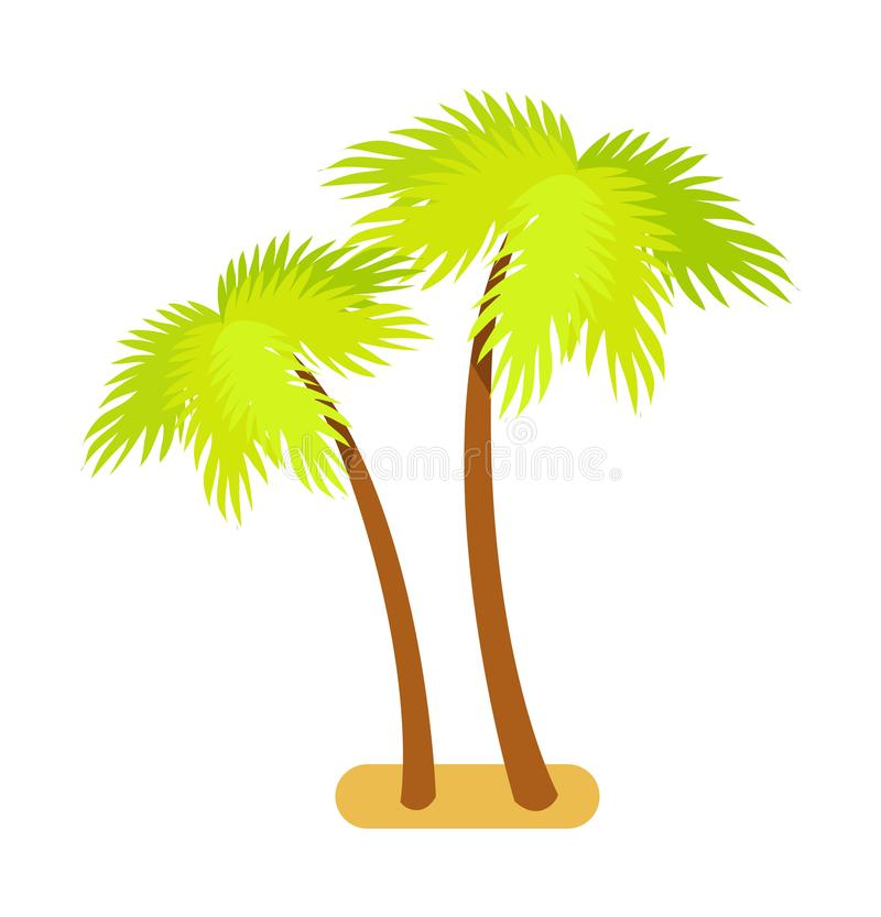 Tropische Palme-Sammlungs-Vektor-Illustration vektor abbildung