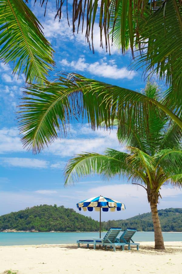 tropische plaats stock fotografie
