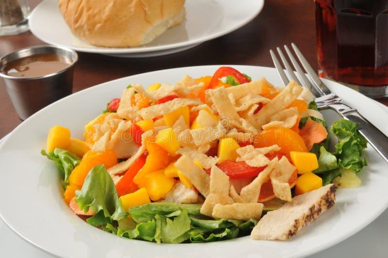 Tropische plonssalade stock afbeeldingen