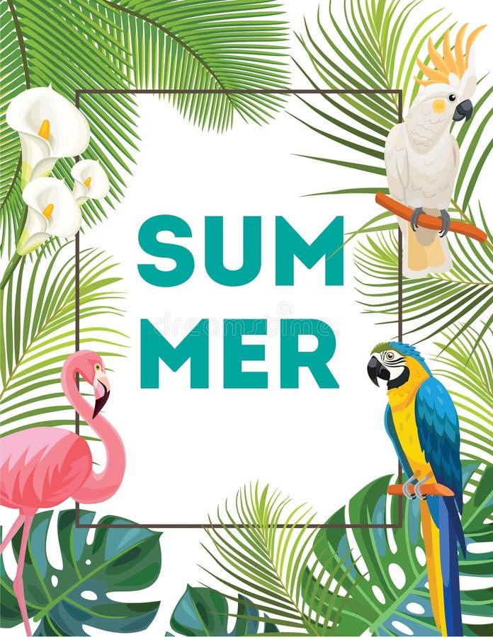 Tropische Postkarte mit Vögeln lizenzfreie abbildung