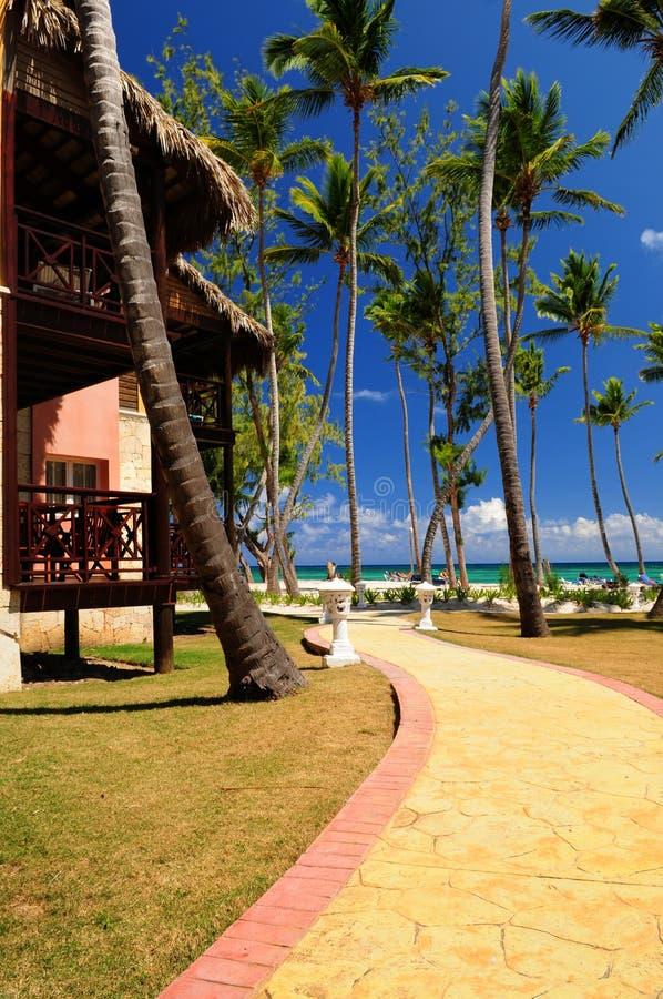 Tropische Rücksortierung lizenzfreies stockbild