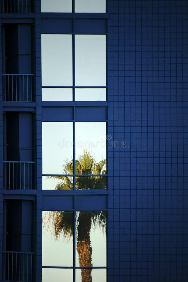 Tropische Reflexion lizenzfreies stockbild