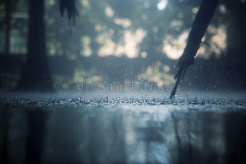 Tropische regen royalty-vrije stock afbeelding