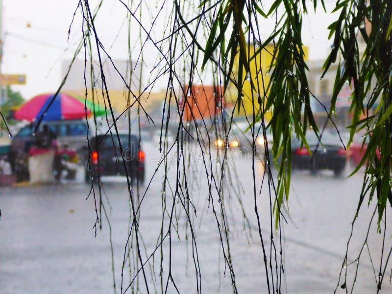 Tropische regen in Kuala Terengganu royalty-vrije stock fotografie