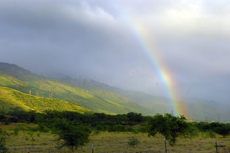 Tropische Regenboog royalty-vrije stock foto