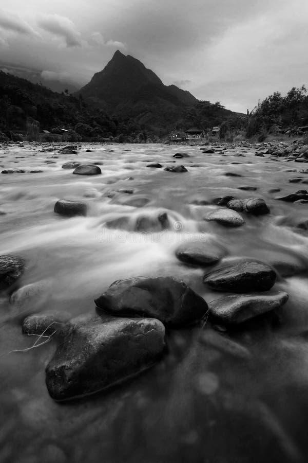 Tropische rivier en berg in zwart-wit stock afbeelding