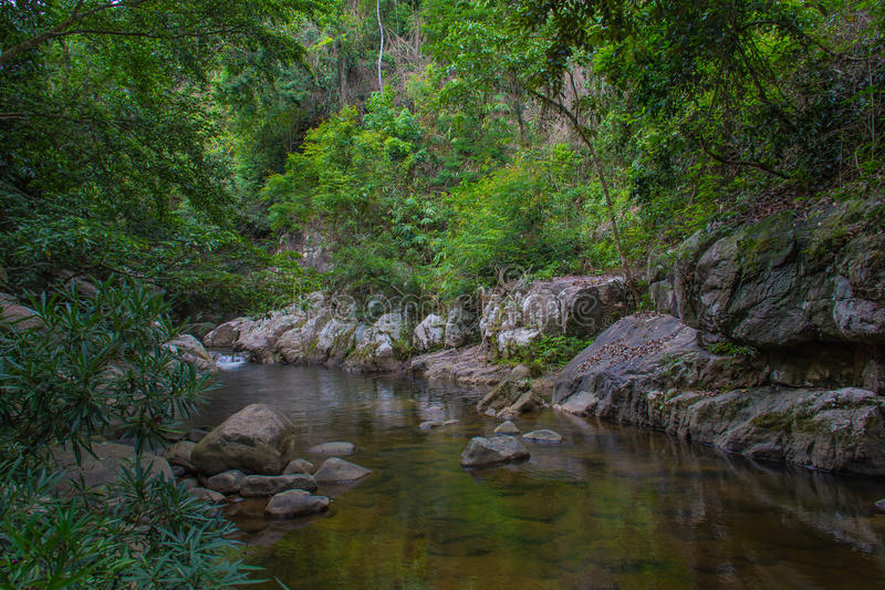 Tropische rivier in wildernis royalty-vrije stock foto's