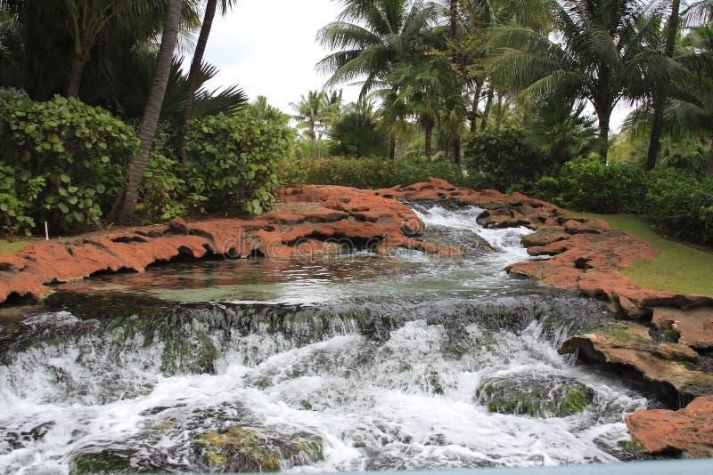 Tropische rivierrotsen royalty-vrije stock foto's
