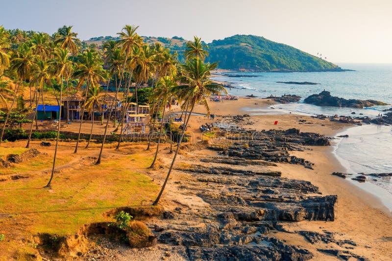 Tropische sandiger Strand- und Palmen nahe dem Ozean stockbild
