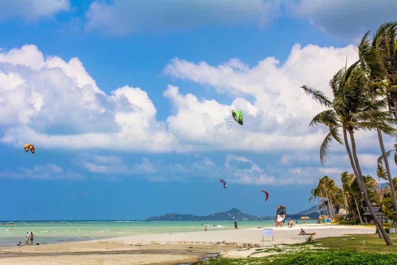Tropische Seelandschaft mit Drachensurfer lizenzfreies stockbild