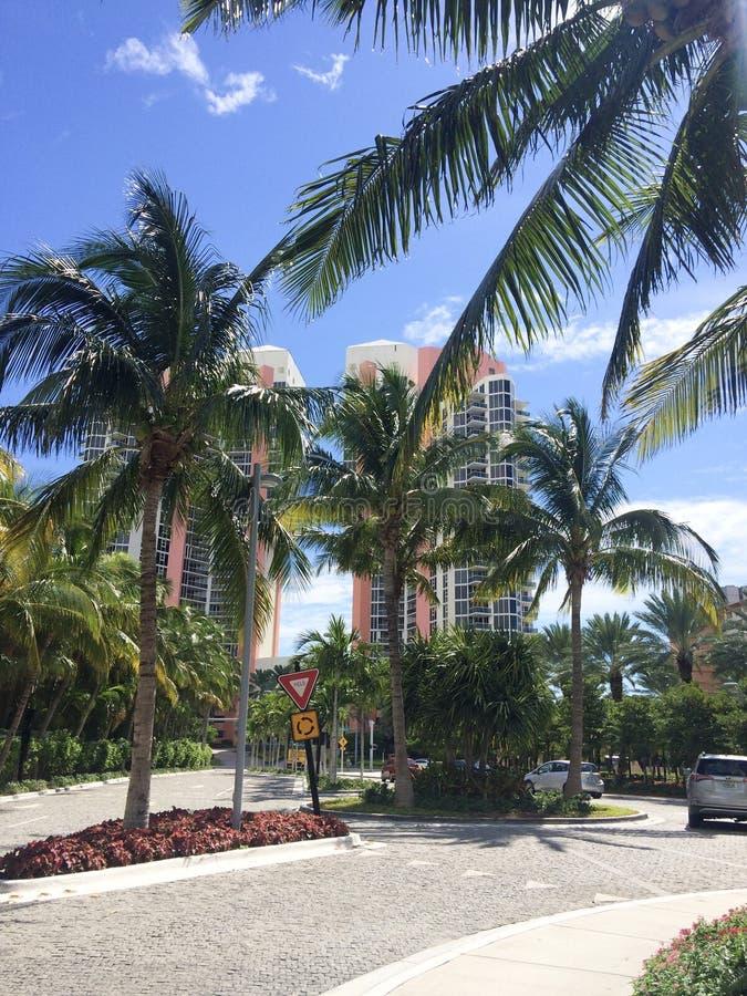Tropische stadsstraten royalty-vrije stock foto