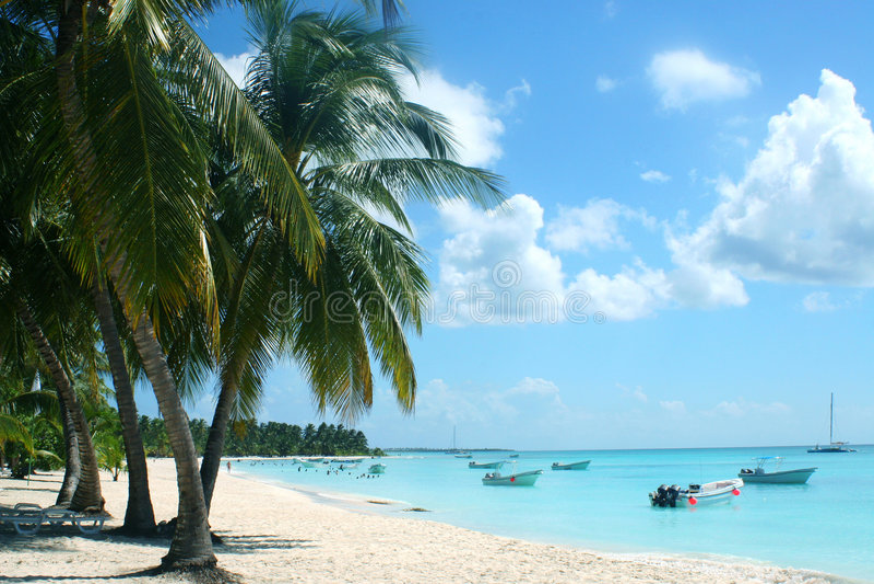 Tropische strand en baai stock foto's
