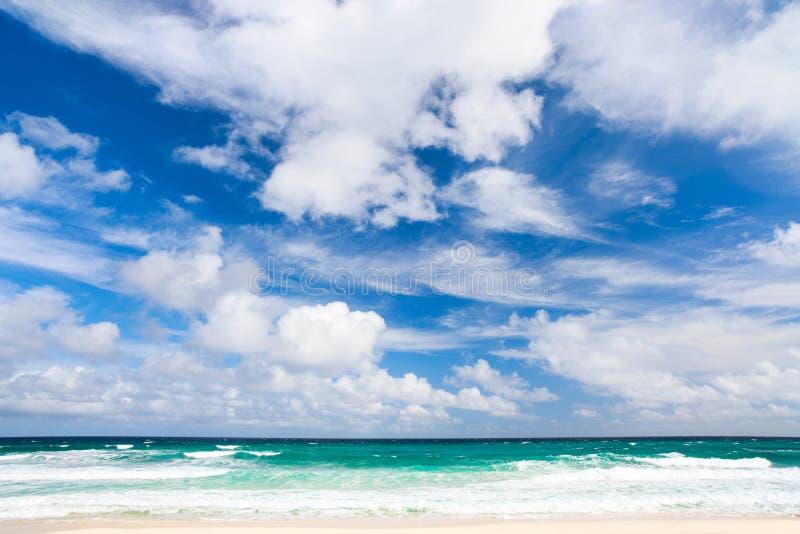Tropische strand en overzees stock foto's