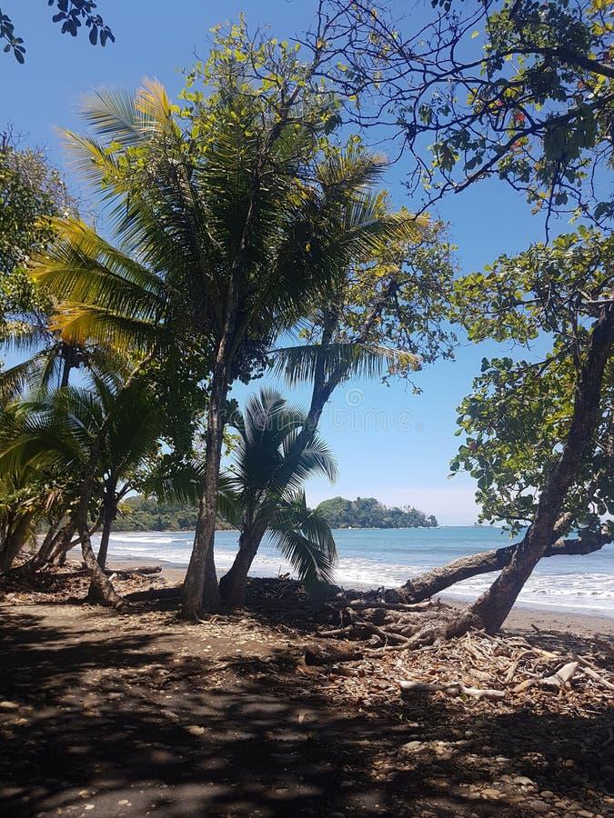 Tropische Strandansicht, Dominical lizenzfreie stockbilder