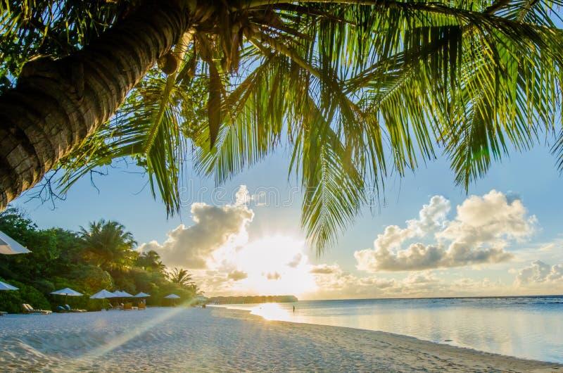 Tropische strandmening dicht bij zonsondergangtijd stock fotografie