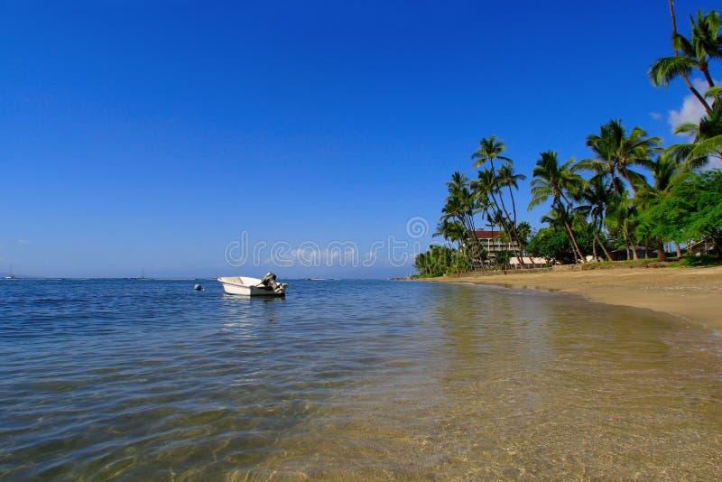 Tropische strandscène royalty-vrije stock foto