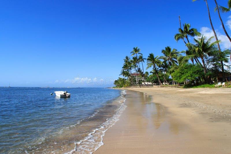 Tropische Strandszene stockbild