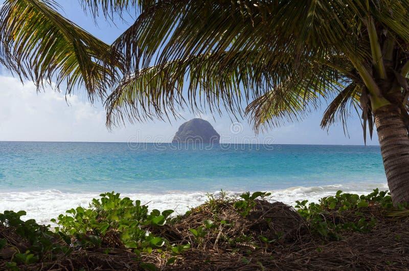 Tropische Szene von Martinique-Bergen, Berg Pelee im Hintergrund, Kleine Antillen stockbilder