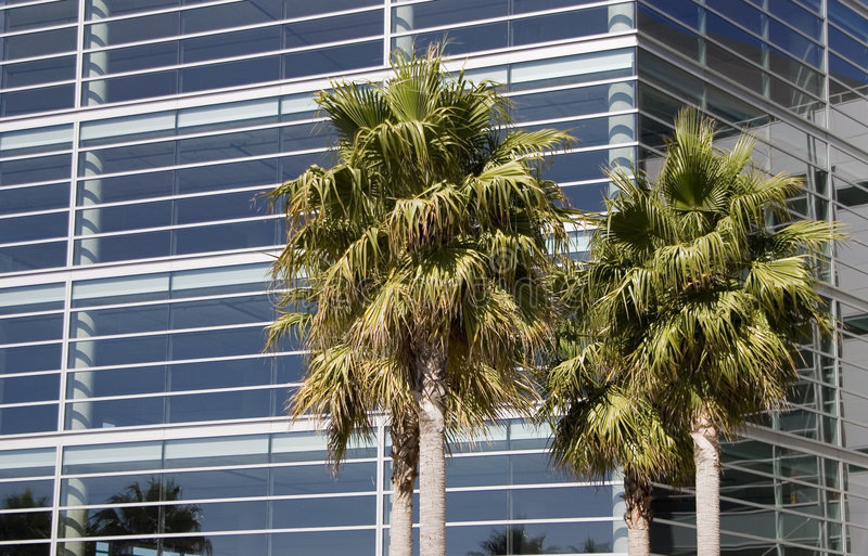Tropische Technologie 1 royalty-vrije stock afbeeldingen