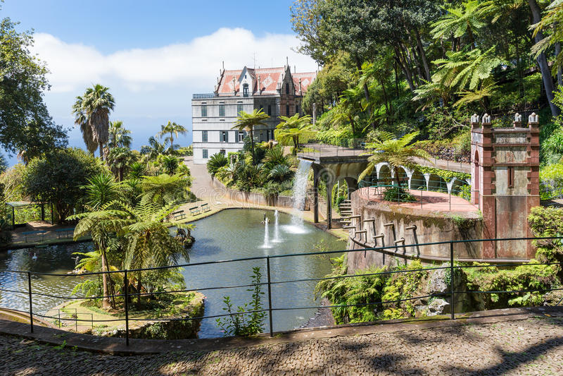 Tropische tuin met vijver en paleis het eiland in van Funchal, Madera stock fotografie