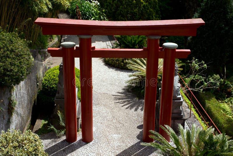 Tropische tuinen in Monte Palace royalty-vrije stock fotografie