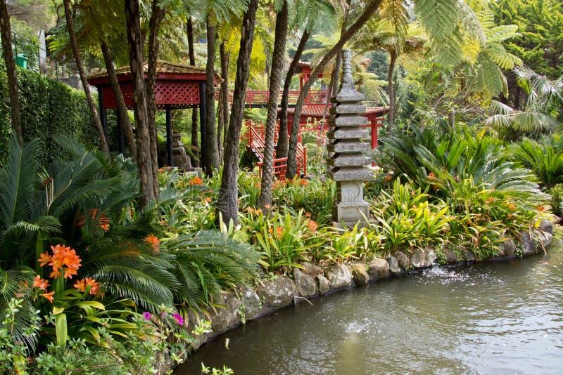 Tropische tuinen in Monte Palace stock afbeelding