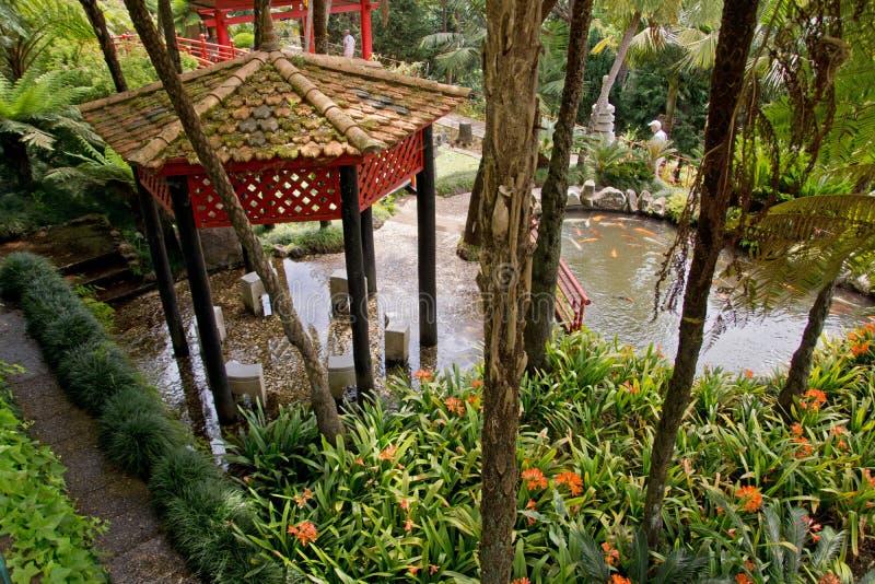 Tropische tuinen in Monte Palace royalty-vrije stock afbeeldingen