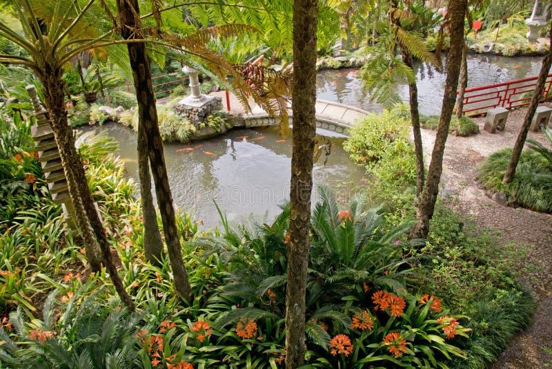 Tropische tuinen in Monte Palace royalty-vrije stock foto