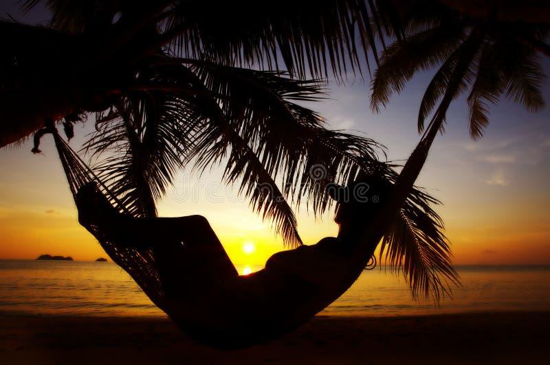 Tropische umreiß lizenzfreie stockbilder