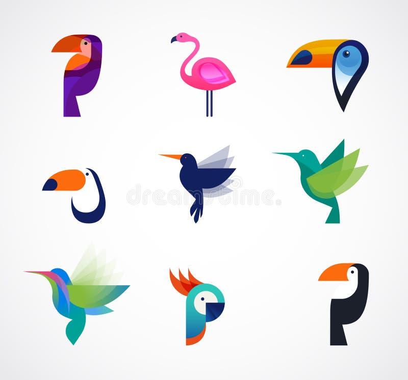 Tropische Vögel - Satz Vektorikonen vektor abbildung