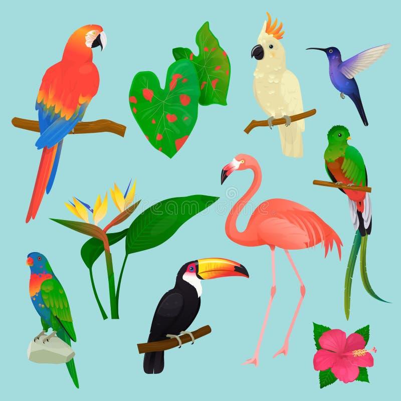 Tropische Vögel vector Flamingo und exotischer Papagei oder Kolibri mit Palmblattillustrationssatz des Modepiepmatzes lizenzfreie abbildung