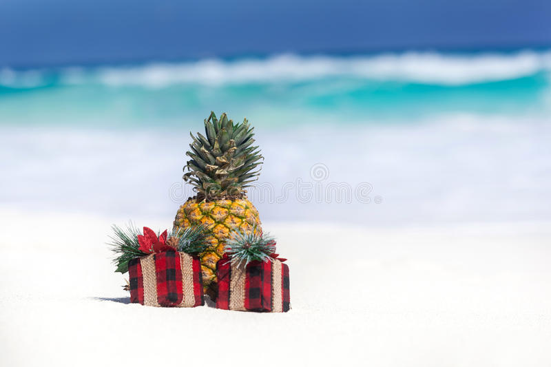 Tropische vakantiekaart, partij voor veganisten stock foto's