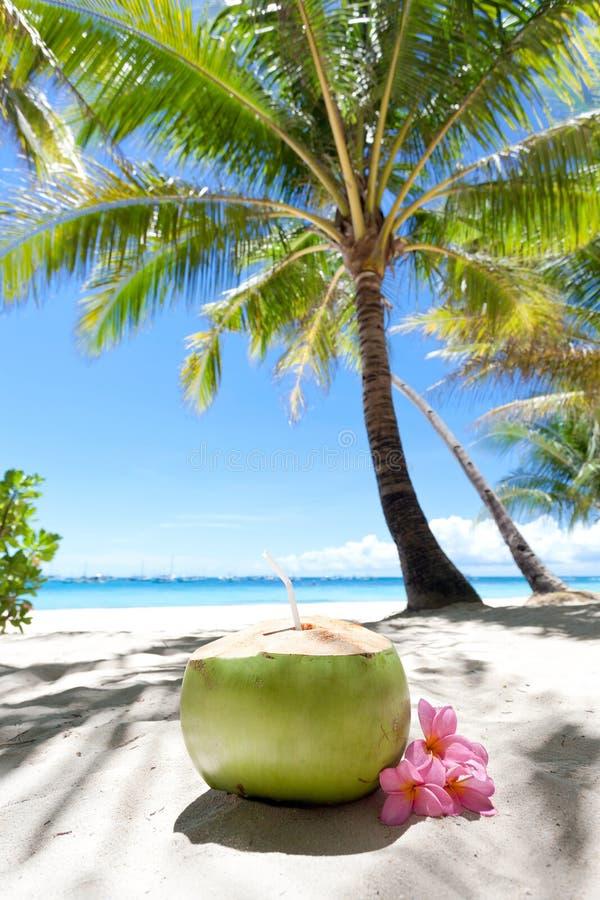 Tropische verse cocktail op wit strand stock afbeelding
