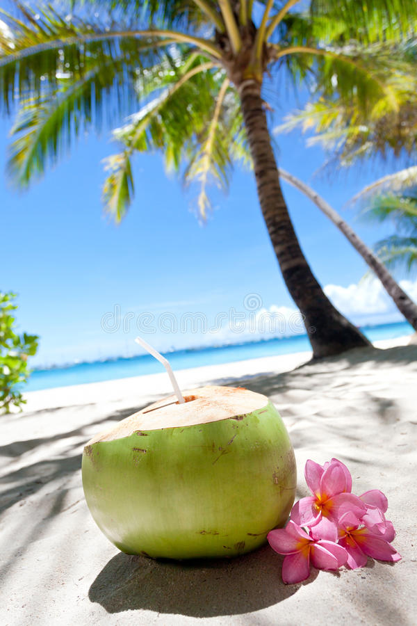 Tropische verse cocktail op wit strand royalty-vrije stock afbeeldingen