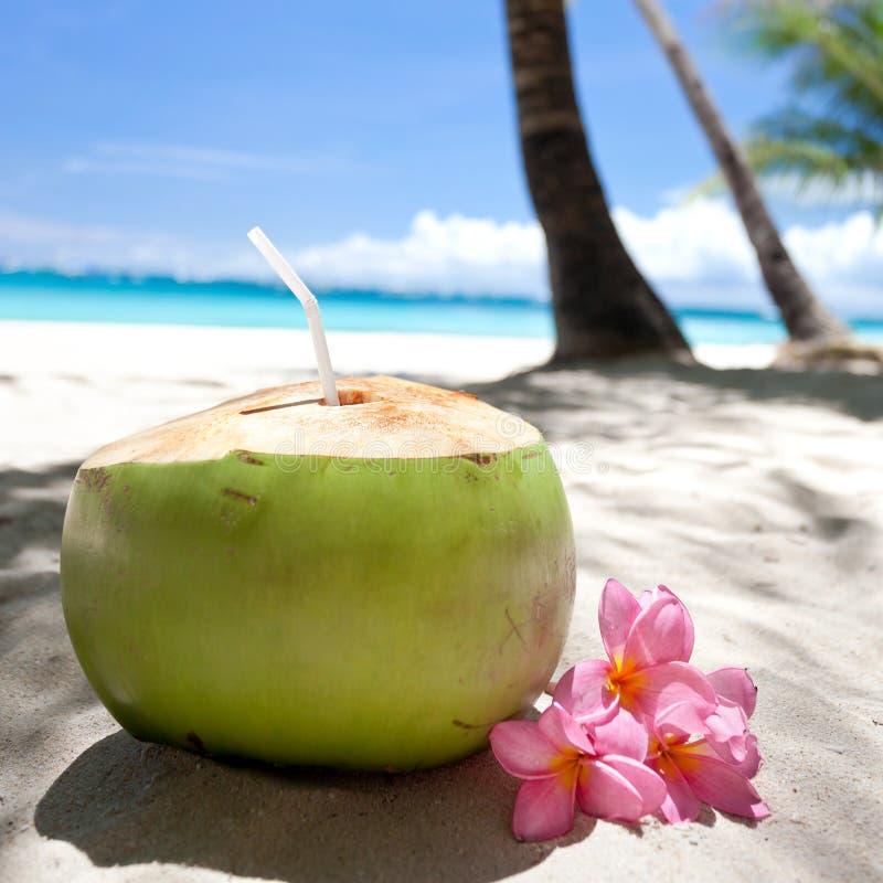 Tropische verse cocktail op wit strand royalty-vrije stock fotografie