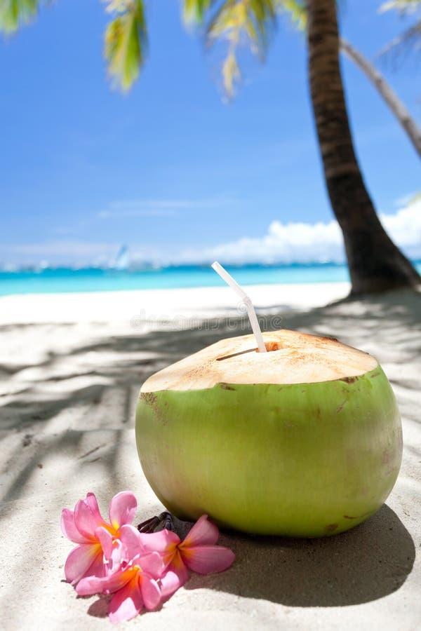 Tropische verse cocktail op wit strand royalty-vrije stock foto's