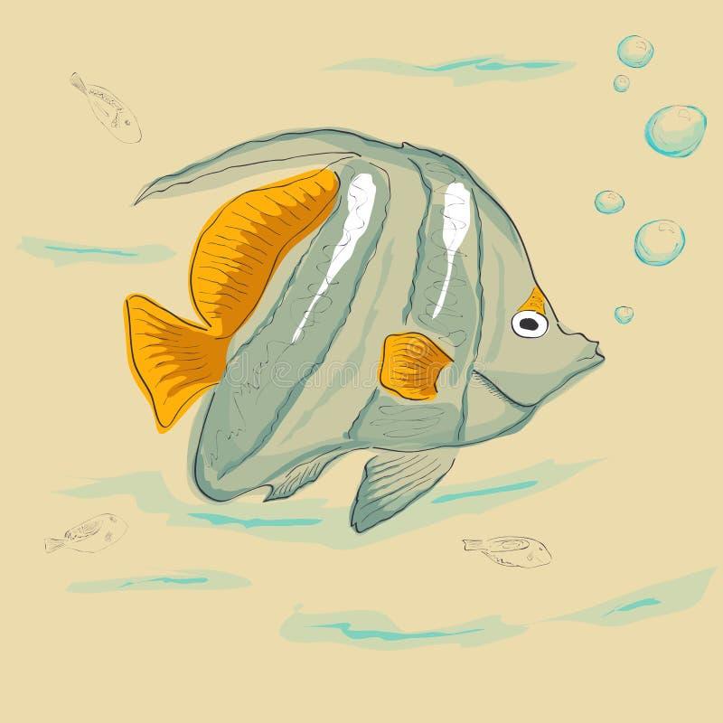 vissen stock foto afbeelding bestaande uit aquatisch