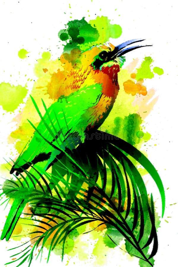 Tropische vogel op een waterverfachtergrond vector illustratie