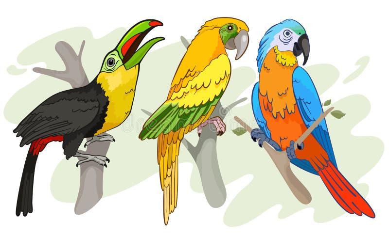 Tropische vogels royalty-vrije illustratie