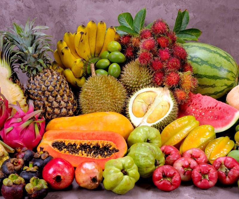 Tropische vruchten stock afbeelding